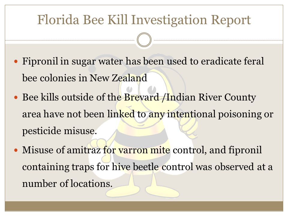 Florida Bee Kill Investigation Report Fipronil in sugar water has been used to eradicate feral bee colonies in New Zealand Bee kills outside of the Brevard /Indian River County area have not been linked to any intentional poisoning or pesticide misuse.
