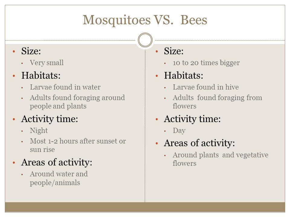 Mosquitoes VS.