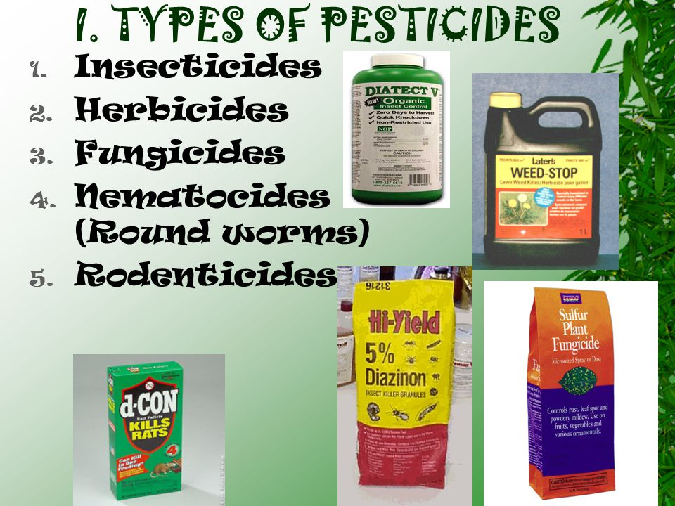 I.TYPES OF PESTICIDES 1. Insecticides 2. Herbicides 3.