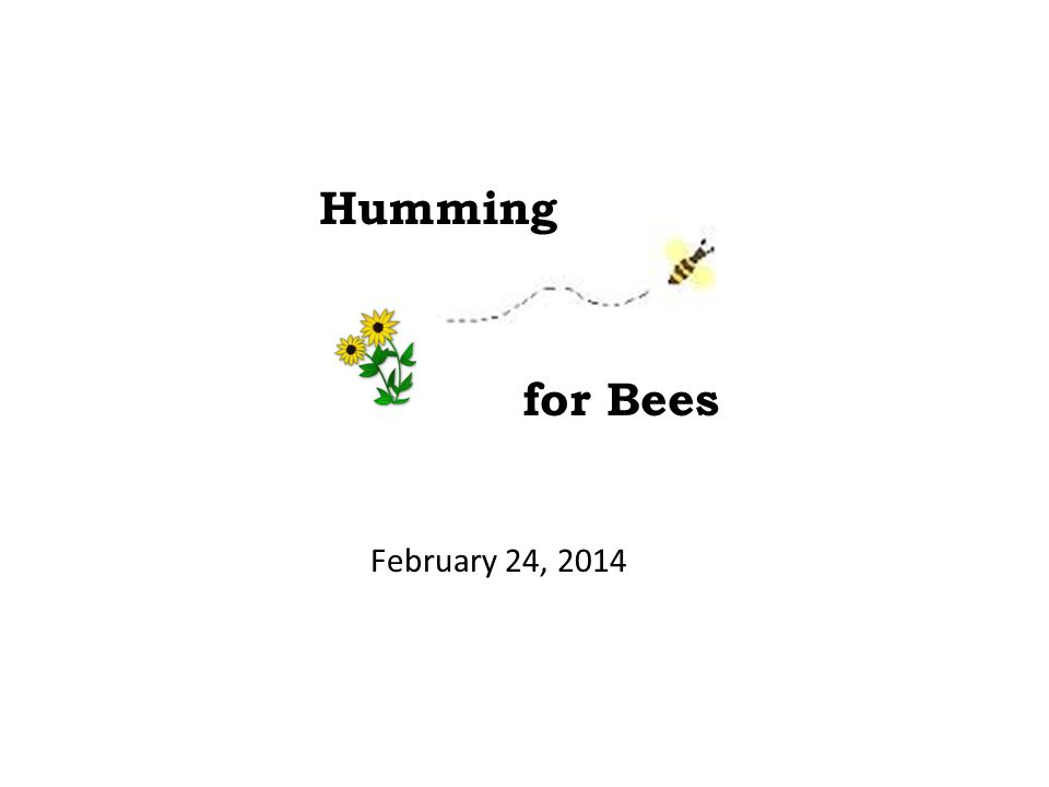 February 24, 2014 Humming for Bees