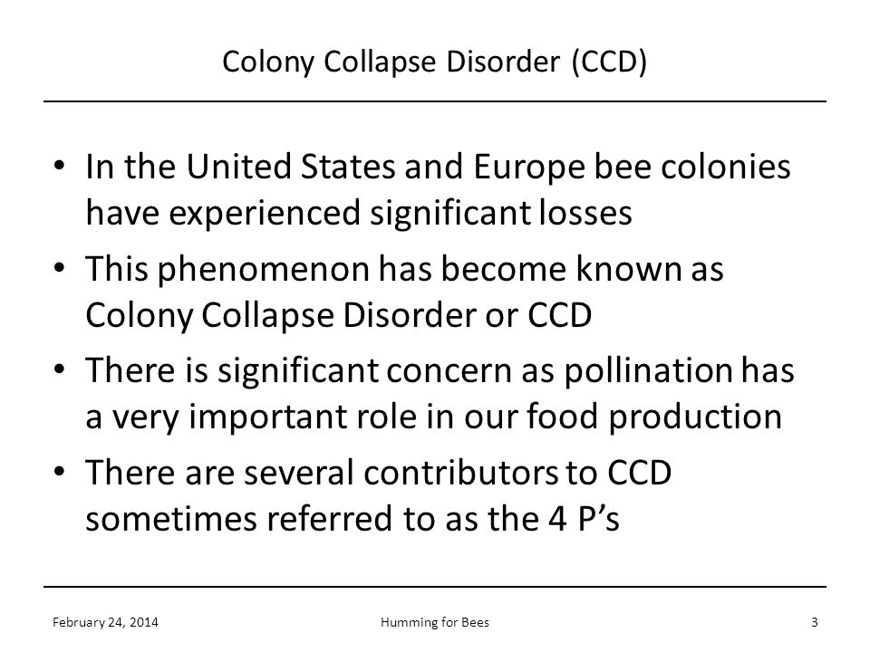 Colony Collapse Disorder (CCD) In the United States and Europe bee colonies have experienced significant losses This phenomenon has become known as Co