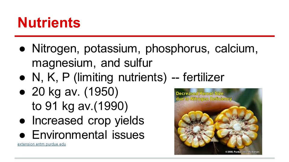 Nutrients ●Nitrogen, potassium, phosphorus, calcium, magnesium, and sulfur ●N, K, P (limiting nutrients) -- fertilizer ●20 kg av.