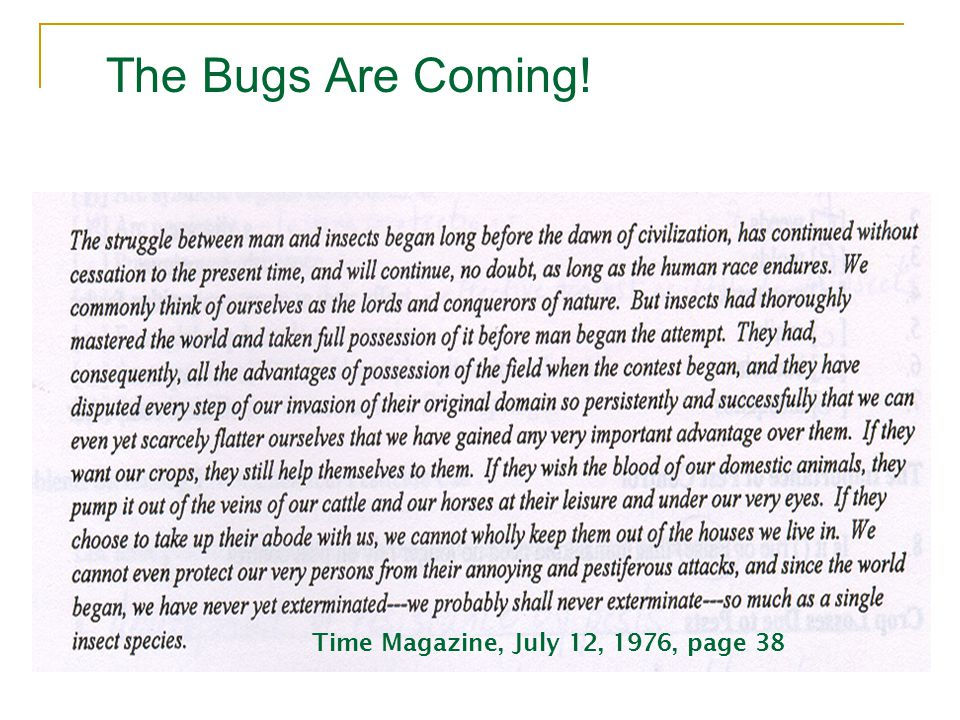 The Bugs Are Coming! Time Magazine, July 12, 1976, page 38