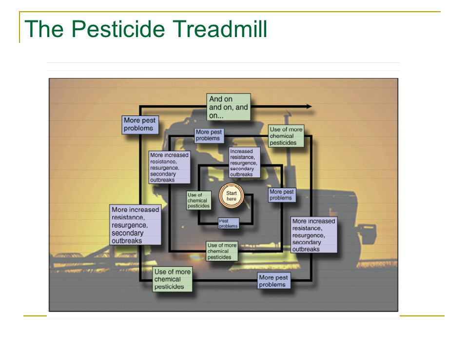 The Pesticide Treadmill