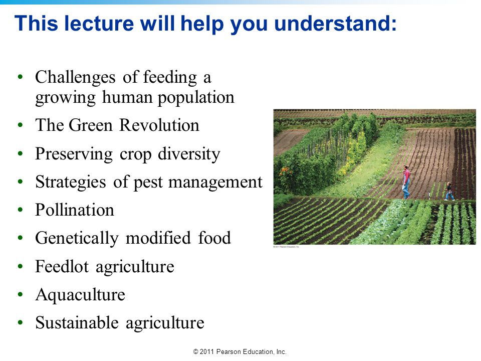 © 2011 Pearson Education, Inc. This lecture will help you understand: Challenges of feeding a growing human population The Green Revolution Preserving