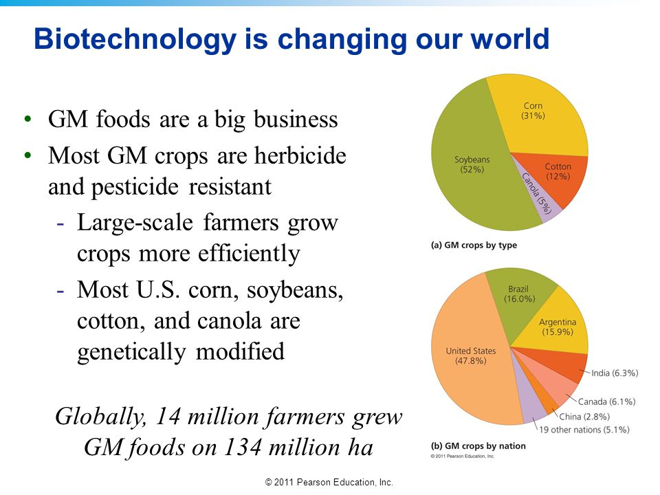 © 2011 Pearson Education, Inc. Biotechnology is changing our world GM foods are a big business Most GM crops are herbicide and pesticide resistant -La