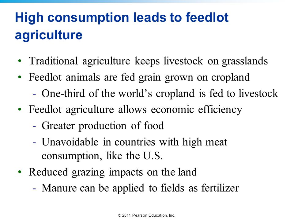 © 2011 Pearson Education, Inc. High consumption leads to feedlot agriculture Traditional agriculture keeps livestock on grasslands Feedlot animals are