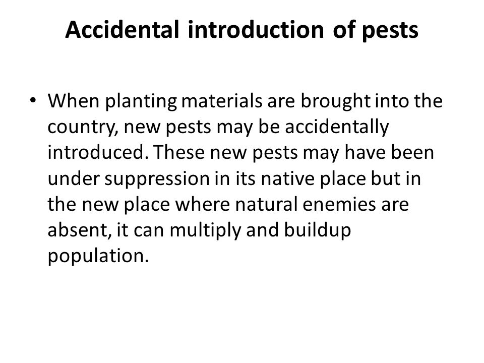 Accidental introduction of pests When planting materials are brought into the country, new pests may be accidentally introduced.