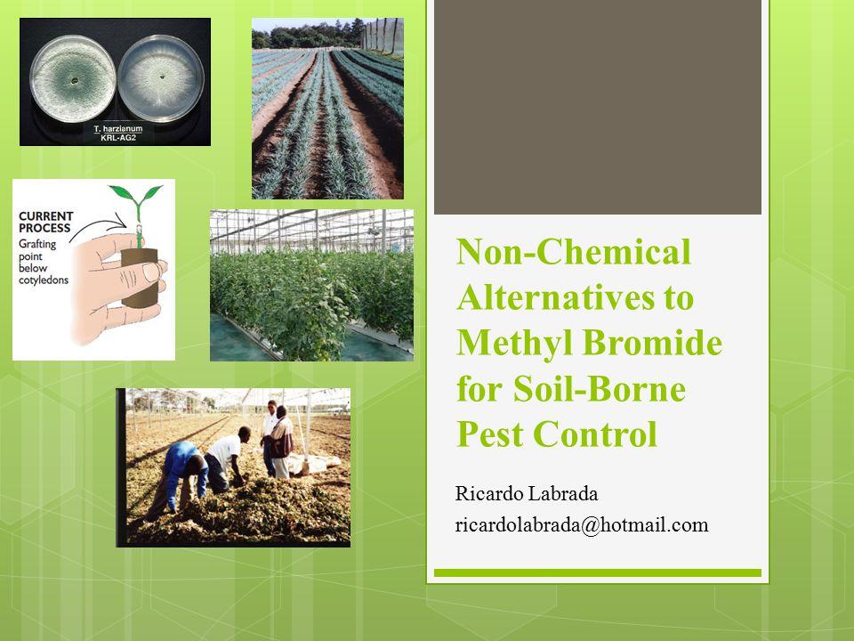 Non-Chemical Alternatives to Methyl Bromide for Soil-Borne Pest Control Ricardo Labrada ricardolabrada@hotmail.com