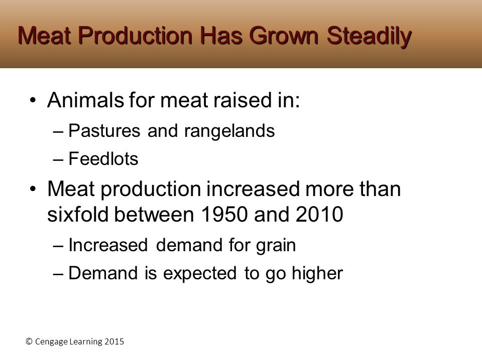 © Cengage Learning 2015 Animals for meat raised in: –Pastures and rangelands –Feedlots Meat production increased more than sixfold between 1950 and 20