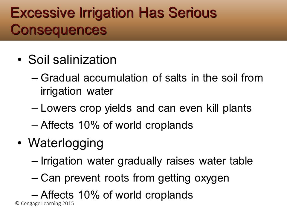 © Cengage Learning 2015 Soil salinization –Gradual accumulation of salts in the soil from irrigation water –Lowers crop yields and can even kill plant