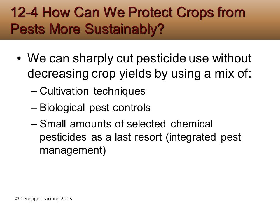 © Cengage Learning 2015 We can sharply cut pesticide use without decreasing crop yields by using a mix of: –Cultivation techniques –Biological pest co
