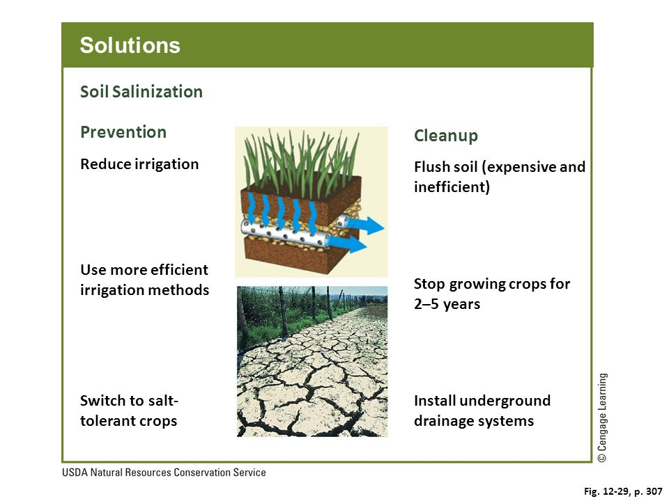 Fig. 12-29, p. 307 Solutions Soil Salinization Prevention Cleanup Flush soil (expensive and inefficient) Reduce irrigation Stop growing crops for 2–5
