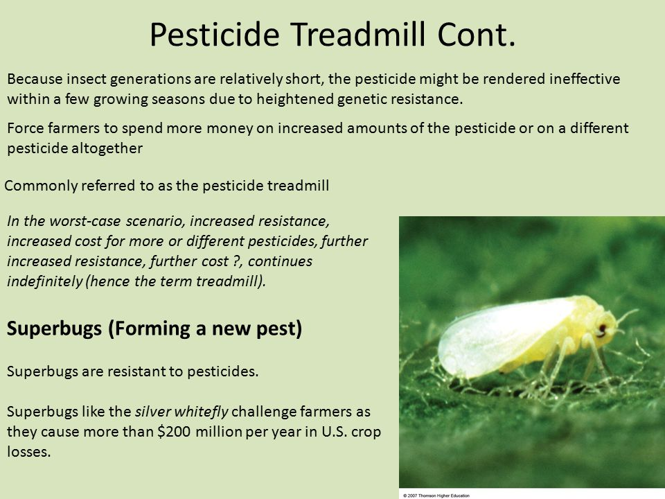 Pesticide Treadmill Cont. Force farmers to spend more money on increased amounts of the pesticide or on a different pesticide altogether Commonly refe