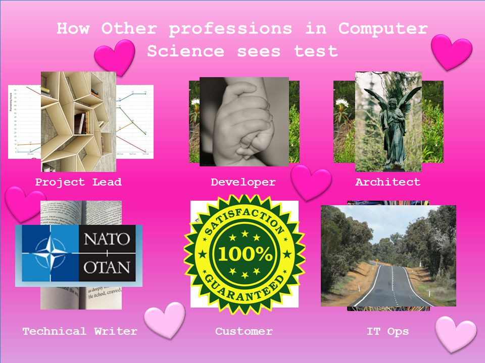 How Other professions in Computer Science sees test Project LeadDeveloperArchitect Technical WriterCustomerIT Ops