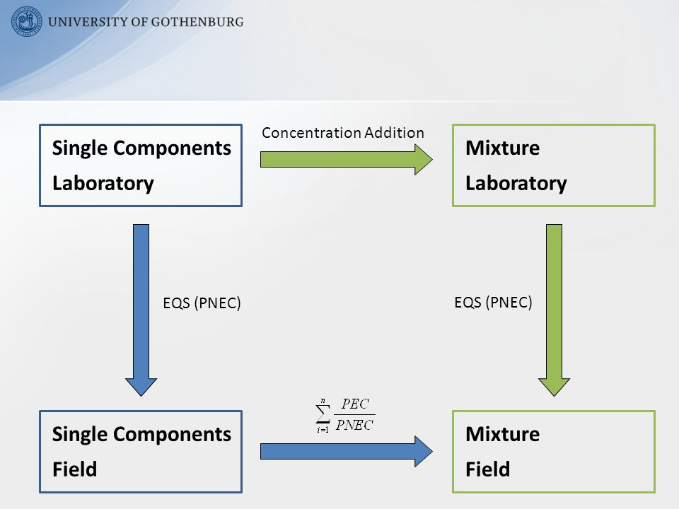 Single Components Laboratory EQS (PNEC) Concentration Addition Single Components Field Mixture Laboratory EQS (PNEC) Mixture Field