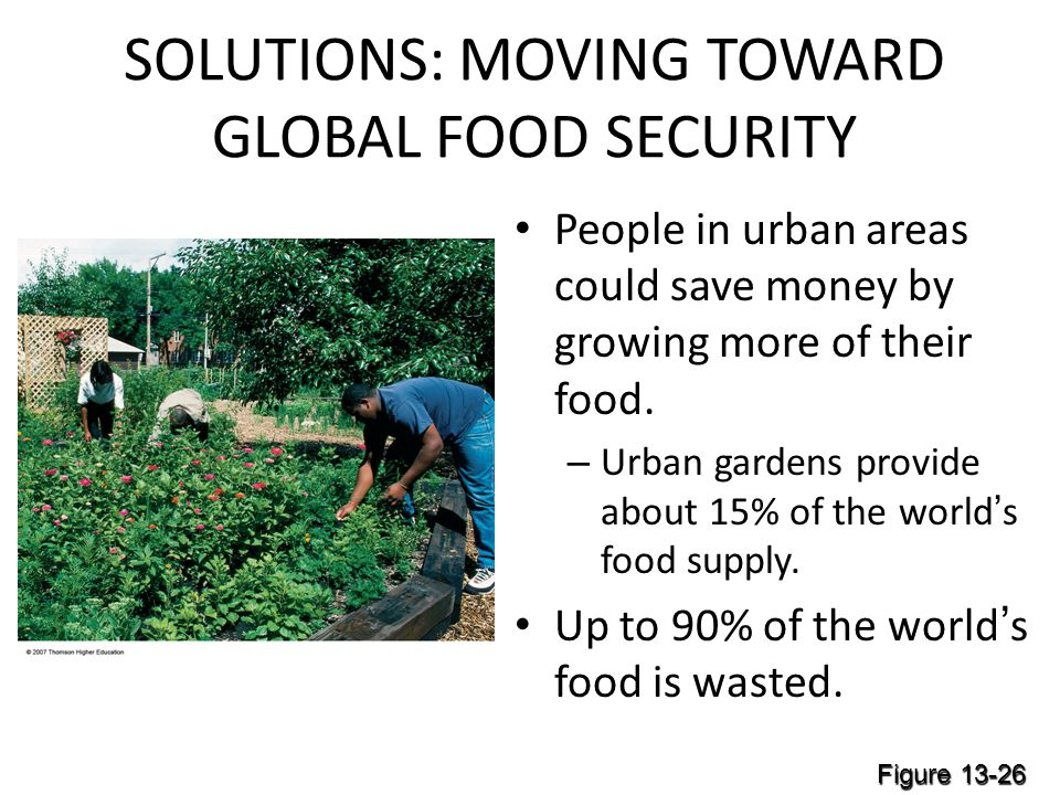SOLUTIONS: MOVING TOWARD GLOBAL FOOD SECURITY People in urban areas could save money by growing more of their food.