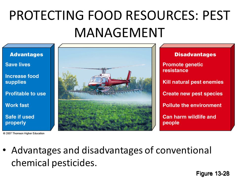 PROTECTING FOOD RESOURCES: PEST MANAGEMENT Advantages and disadvantages of conventional chemical pesticides.