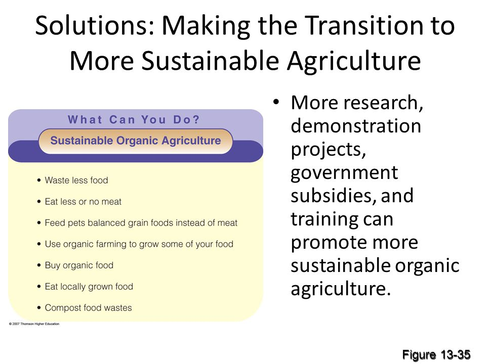 Solutions: Making the Transition to More Sustainable Agriculture More research, demonstration projects, government subsidies, and training can promote more sustainable organic agriculture.