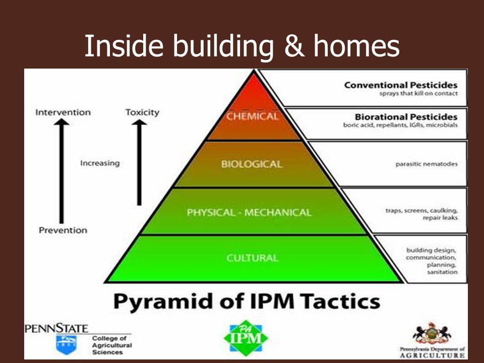 Inside building & homes