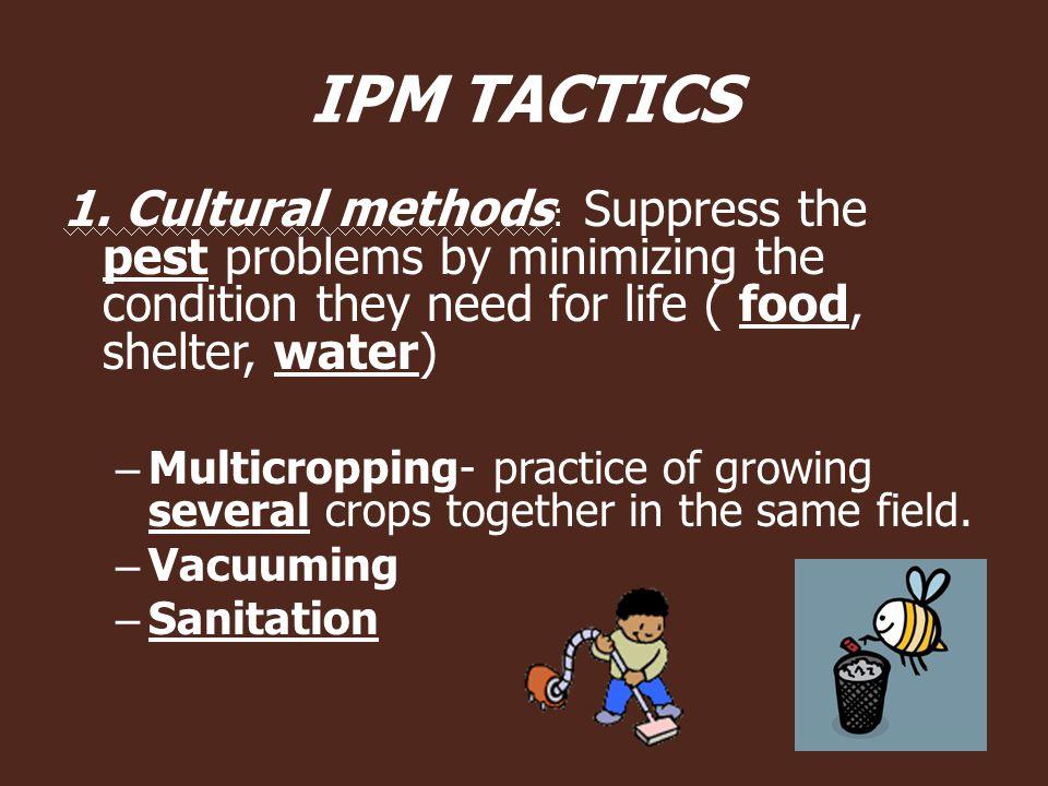 IPM TACTICS 1.
