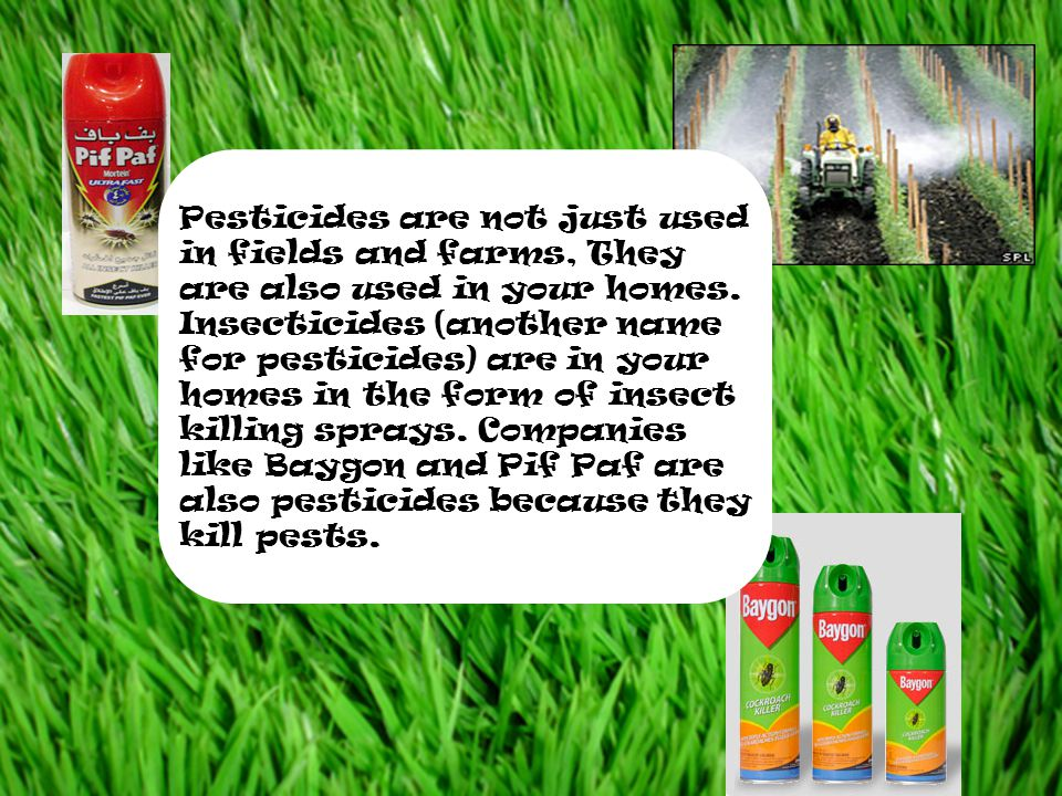 Pesticides are not just used in fields and farms, They are also used in your homes.