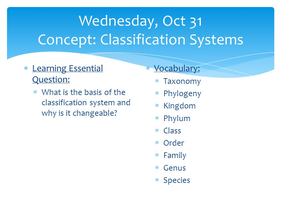 Wednesday, Oct 31 Concept: Classification Systems  Learning Essential Question:  What is the basis of the classification system and why is it changeable.