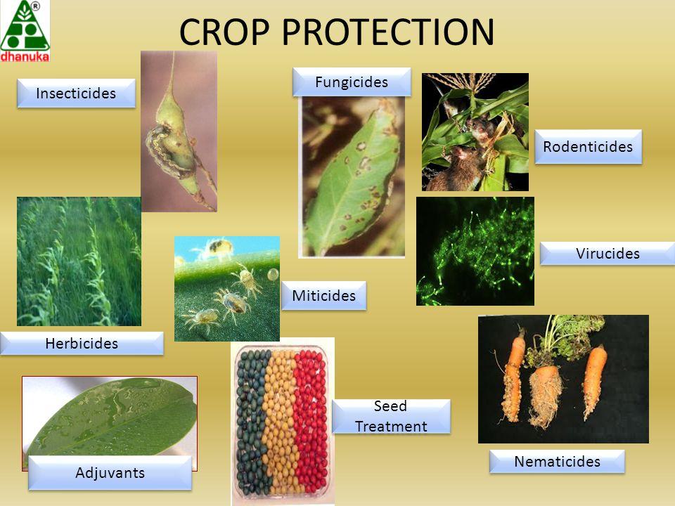 CROP PROTECTION Miticides Seed Treatment Herbicides Fungicides Insecticides Adjuvants Rodenticides Virucides Nematicides