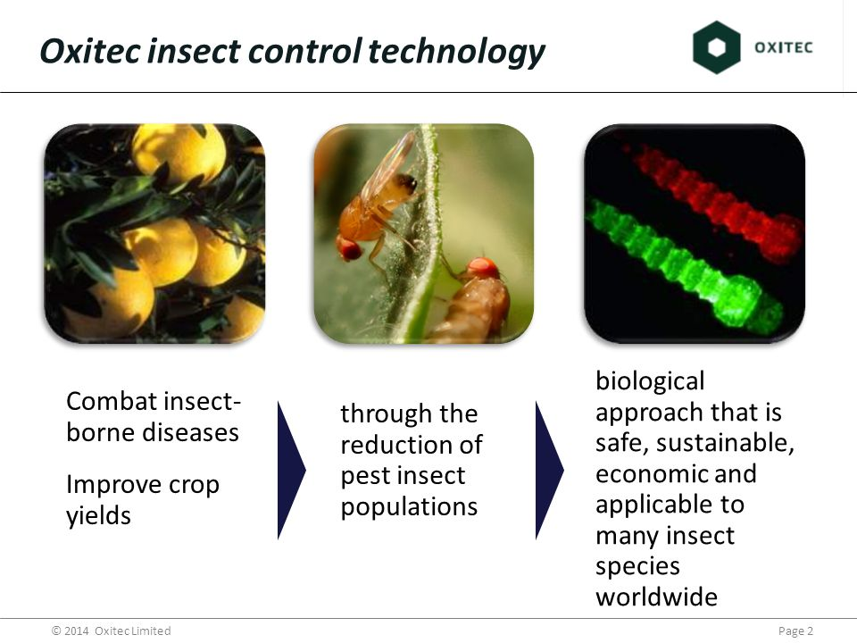 Page 3© 2014 Oxitec Limited New control solutions needed for public health and agriculture consumer demand for more food on less land demand for residue reduction changing pest pressures fewer available pesticides pesticide resistance Why engineer insects for pest control ?