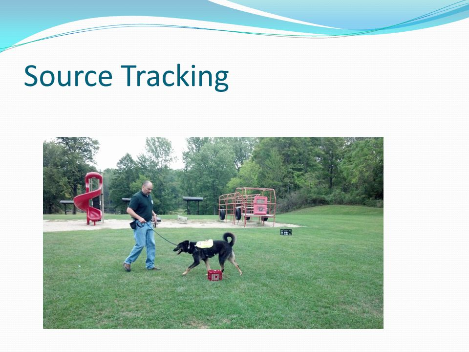 Source Tracking