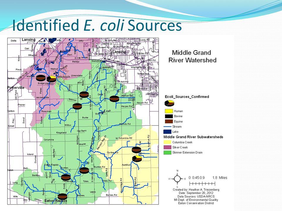 Identified E. coli Sources