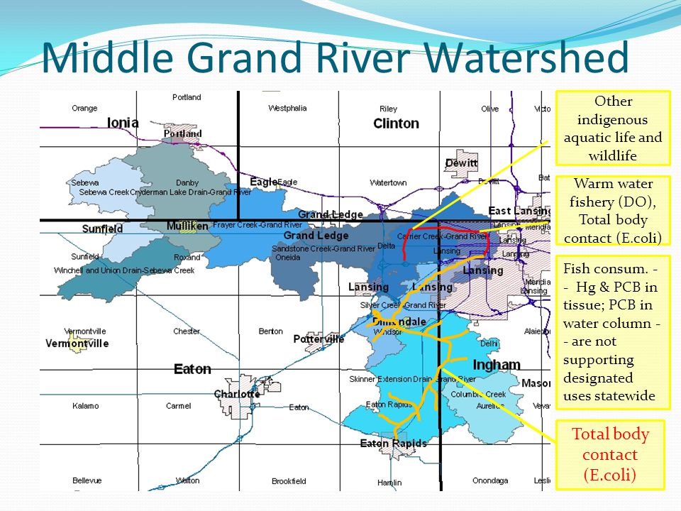 Middle Grand River Watershed Warm water fishery (DO), Total body contact (E.coli) Other indigenous aquatic life and wildlife Fish consum.