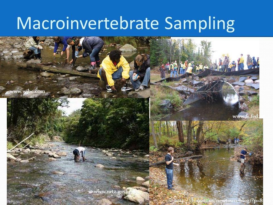 http://dumais.us/newtown/blog/ p=8300 www.nrtz.govt.nz www.vernier.com www.fs.fed.us www.wjbc.com Macroinvertebrate Sampling