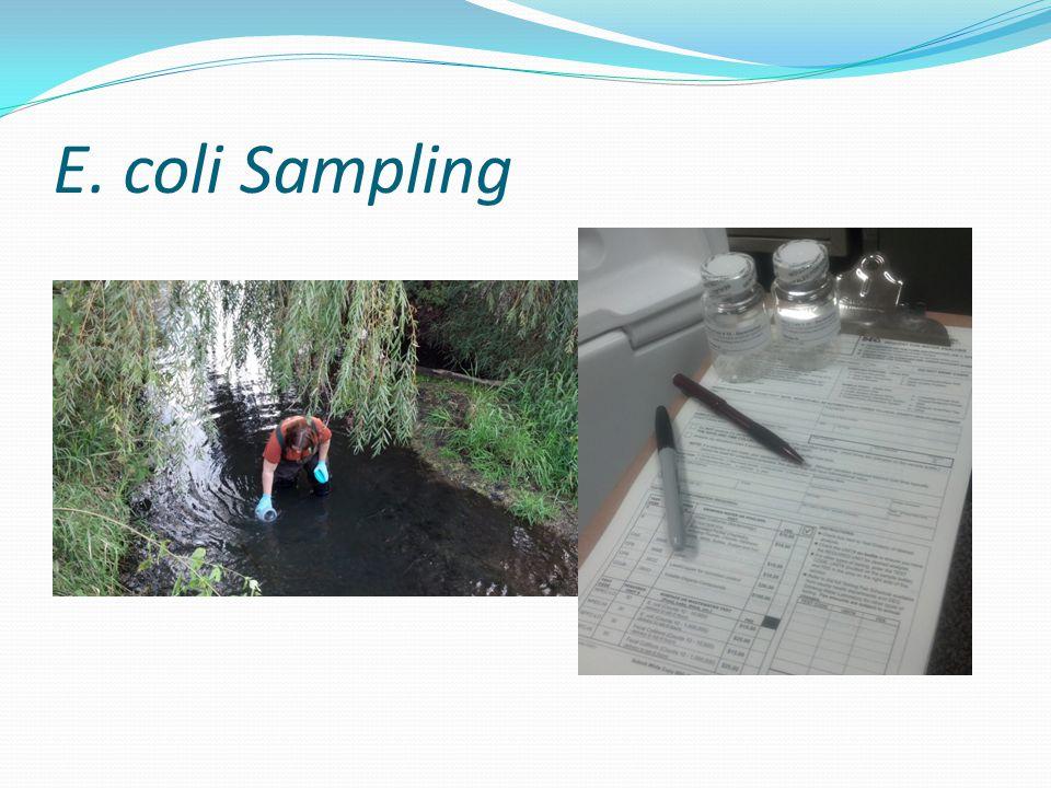 E. coli Sampling