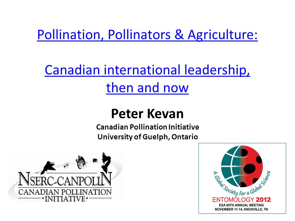 Pollination, Pollinators & Agriculture: Canadian international leadership, then and now Peter Kevan Canadian Pollination Initiative University of Guelph, Ontario
