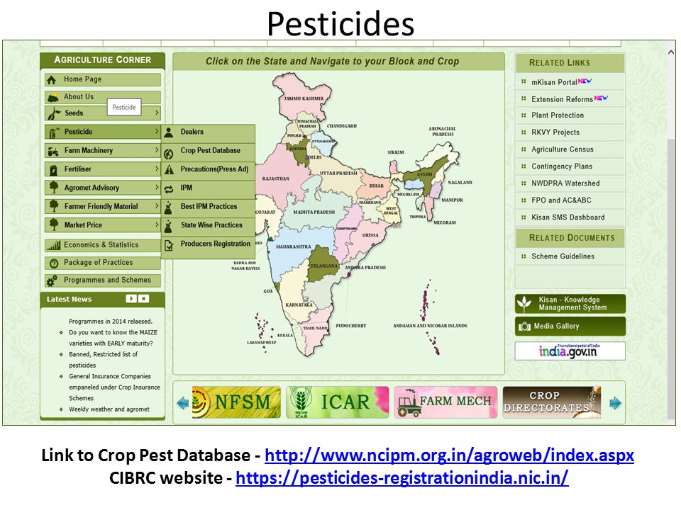 Pesticides Link to Crop Pest Database - http://www.ncipm.org.in/agroweb/index.aspxhttp://www.ncipm.org.in/agroweb/index.aspx CIBRC website - https://pesticides-registrationindia.nic.in/https://pesticides-registrationindia.nic.in/
