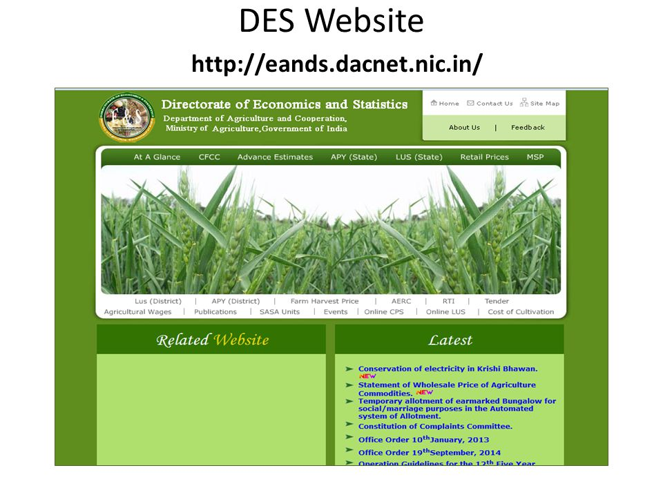 DES Website http://eands.dacnet.nic.in/