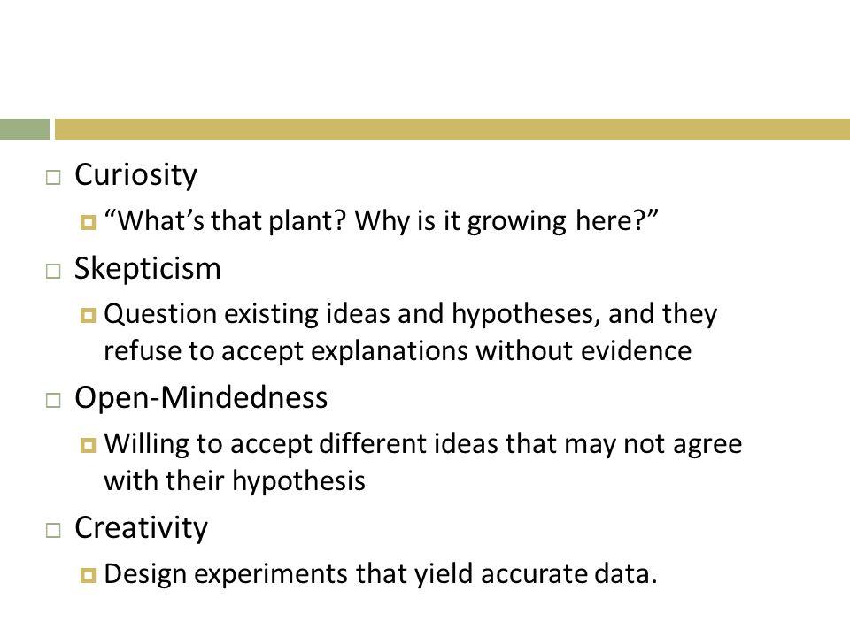 Curiosity  What's that plant.