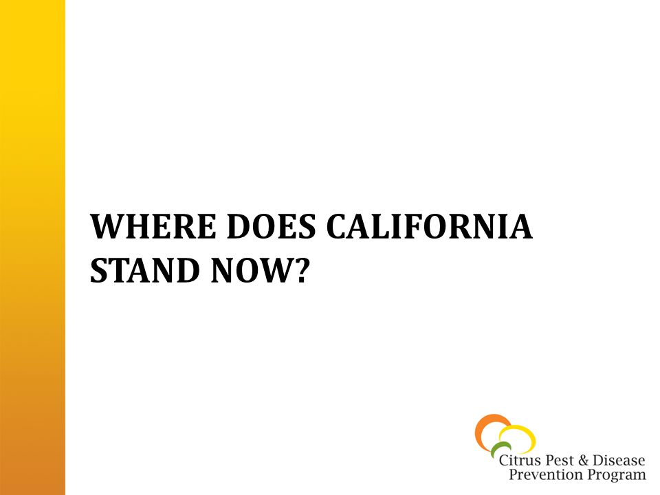 WHERE DOES CALIFORNIA STAND NOW?