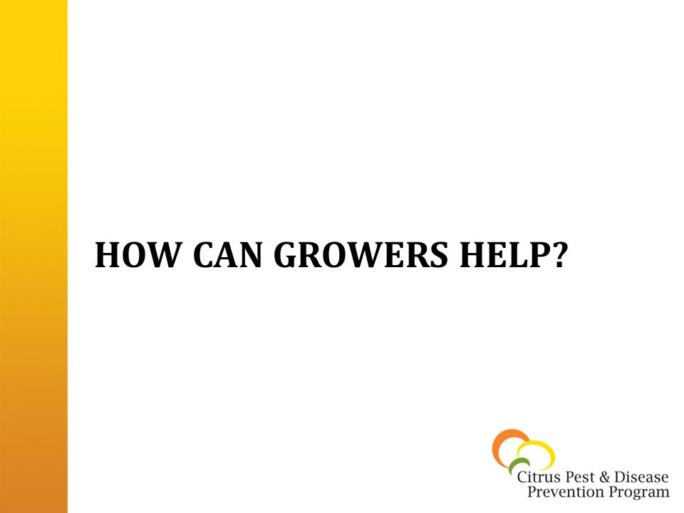 HOW CAN GROWERS HELP?