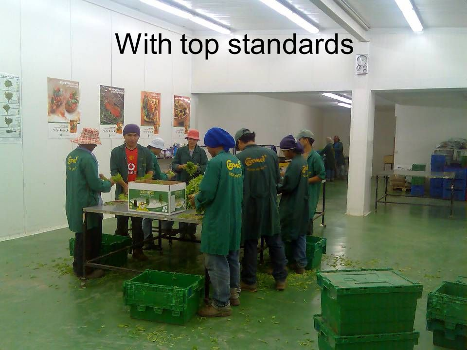 With top standards