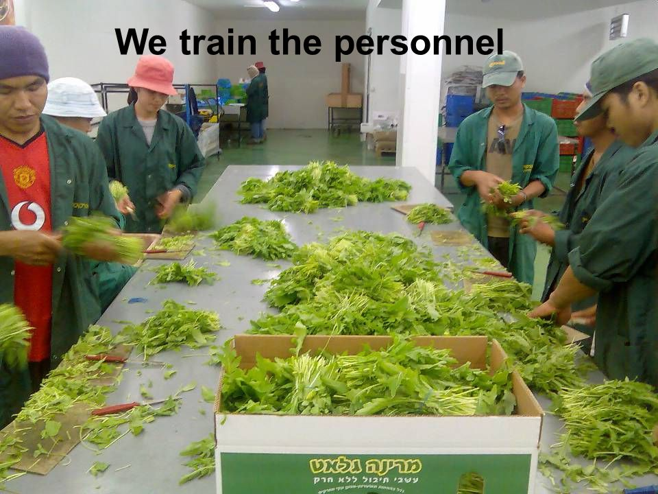 We train the personnel