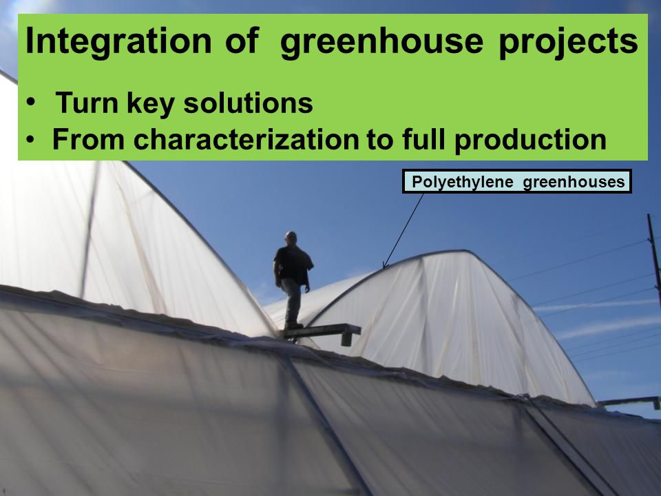 Polyethylene greenhouses Integration of greenhouse projects Turn key solutions From characterization to full production