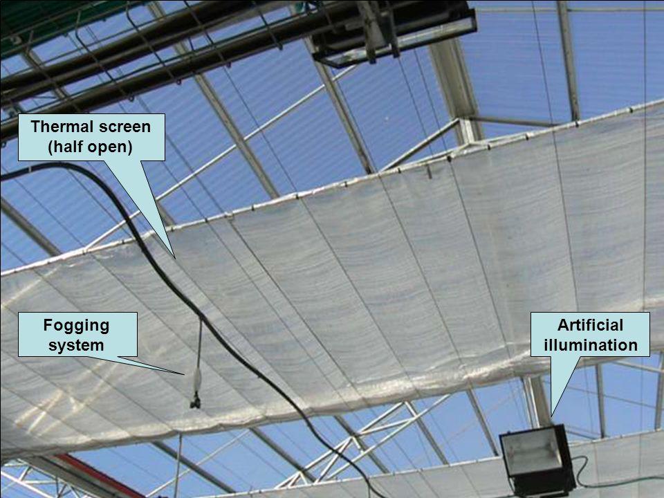 Artificial illumination Fogging system Thermal screen (half open)