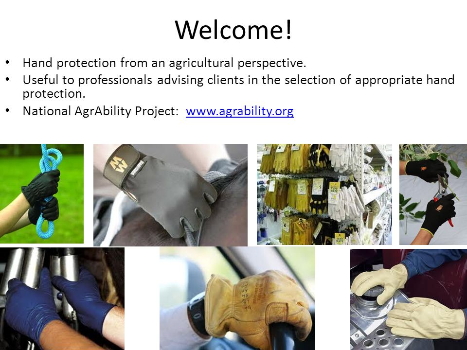 Welcome. Hand protection from an agricultural perspective.
