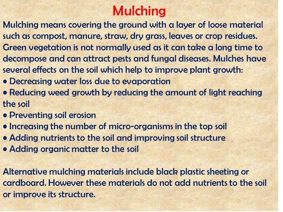 Mulching Mulching means covering the ground with a layer of loose material such as compost, manure, straw, dry grass, leaves or crop residues. Green v