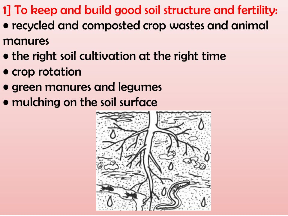 1] To keep and build good soil structure and fertility: recycled and composted crop wastes and animal manures the right soil cultivation at the right