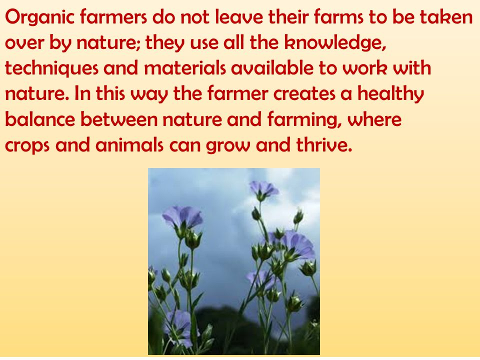 Organic farmers do not leave their farms to be taken over by nature; they use all the knowledge, techniques and materials available to work with natur