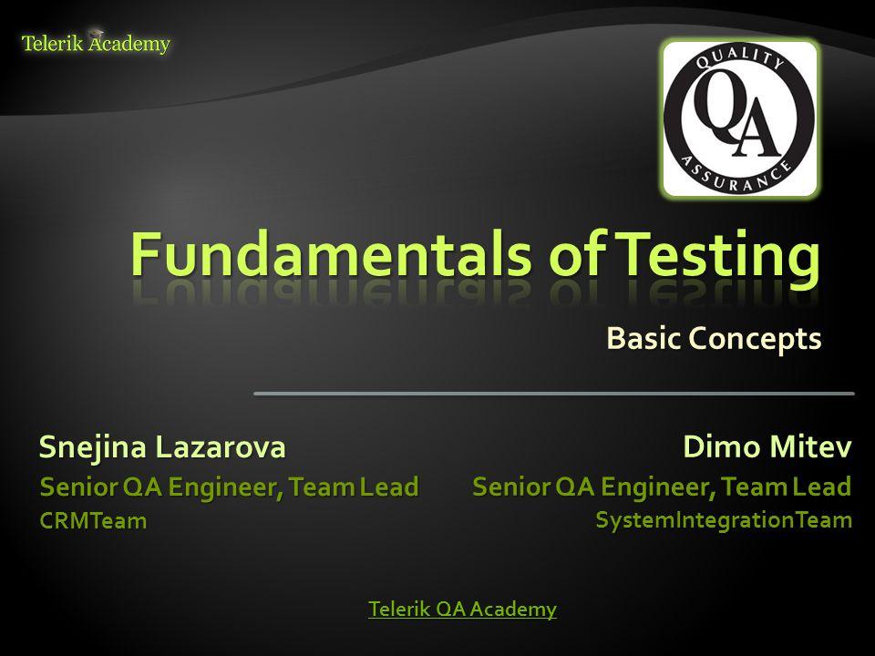 Basic Concepts Snejina Lazarova Senior QA Engineer, Team Lead CRMTeam Dimo Mitev Senior QA Engineer, Team Lead SystemIntegrationTeam Telerik QA Academy Telerik QA Academy