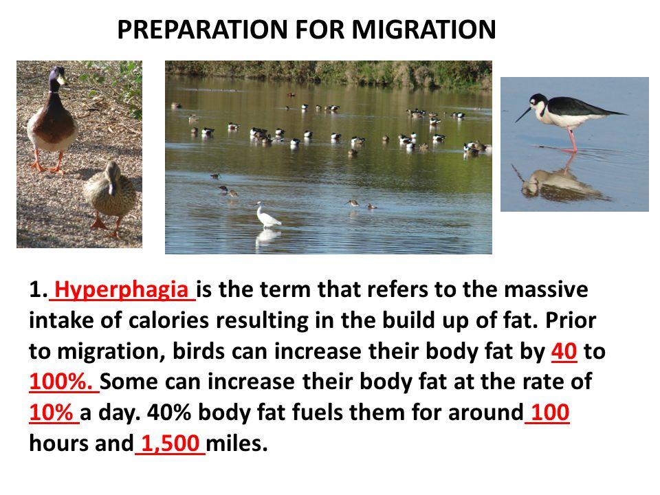 PREPARATION FOR MIGRATION 1.